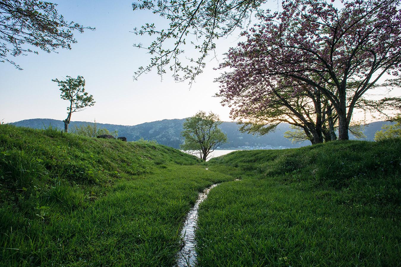 徳山鮓 初春